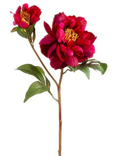 "Glam, colorful WOW.........  HSP619    22.5"" Vintage Peony Spray"