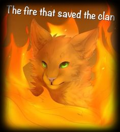 The fire that saved the clan|| FIRESTAR || WARRIOR CATS