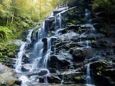 Blue Mountain National Park - in Mizoram, India.