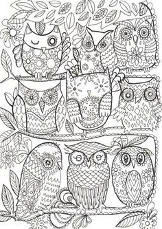 "iColor ""Owls"""