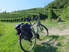 Treno + bici+ vino: verso le colline dell'Oltrepò Pavese Bicycle, Tours, Vehicles, Day Planners, Bicycle Kick, Rolling Stock, Bike, Bmx, Vehicle