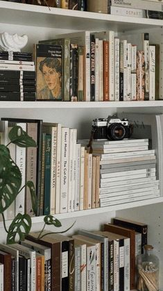 Book Aesthetic, Aesthetic Bedroom, Aesthetic Pictures, Images Esthétiques, My New Room, Dream Life, Future House, Room Inspiration, Bedroom Decor
