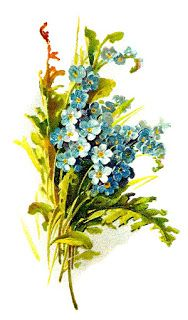 Wildflower Image Digital Forget-Me-Not Flower Download
