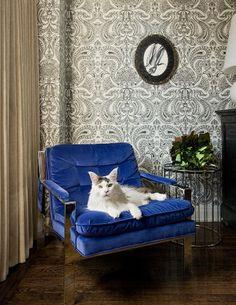 i do have a thing for blue velvet -- from designer EmilyGilbert