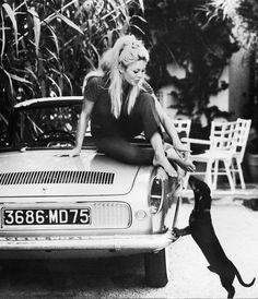 Brigitte Bardot with Dachshund