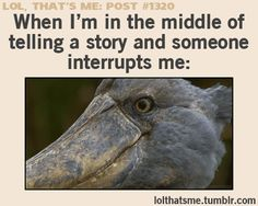 When I'm in the middle of telling a story and someone interrupts me: (gif)