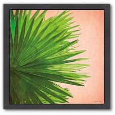Americanflat Palm Frond Black Framed Wall Art ($50) ❤ liked on Polyvore featuring home, home decor, wall art, multicolor, black wall art, palm leaf wall art, contemporary wall art, horizontal wall art and colorful home decor