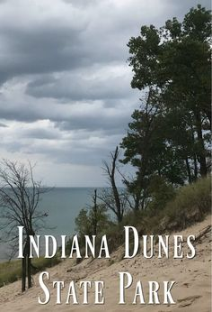 Indiana Dunes State Park in Chesterton, Indiana on Lake Michigan is a beautiful place to enjoy the lake and make memories! There's just something amazing about climbing the dunes, playing in the waves and making memories at the park! Chesterton Indiana, Indiana Dunes, Us Road Trip, Travel Tips, Solo Travel, Travel Ideas, Travel Destinations, Worldwide Travel, Travel