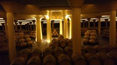 Dinastia Vivanco Cellar, La Rioja Spain