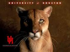 Cougars where in houston to find Houston Cougars