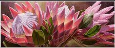 Watercolour Painting, Watercolor Flowers, Paint Flowers, List Of Paintings, Oil Paintings, Protea Art, King Art, Flower Decorations, Art Inspo