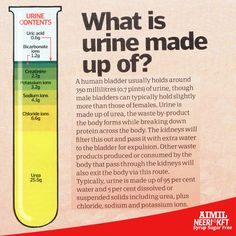What is #urine made up of ? Buy #NeeriKFT online from our PharmacyStore :