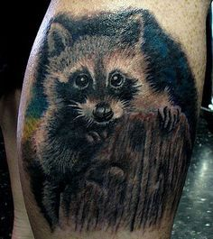 34 Best Cartoon Raccoon Tattoo Images Raccoon Tattoo Raccoons Racoon