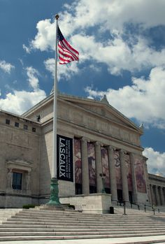 The Field Museum of Natural History in Chicago, Illinois. Has the world's largest Tyrannosaurus Rex.