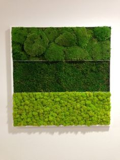 Moss Wall Art, Moss Art, Moss Decor, Moss Fashion, Deco Floral, Flower Decorations, Office Decor, Greenery, Grass