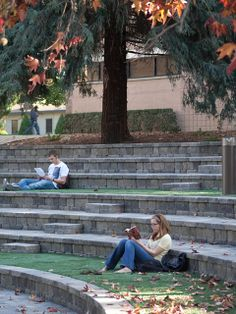 Outdoor Stage, Outdoor Theater, Landscape Stairs, Urban Landscape, Theater Architecture, Landscape Architecture, Parque Linear, Fire Pit Landscaping, Prayer Garden