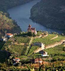 Douro Wine Region.