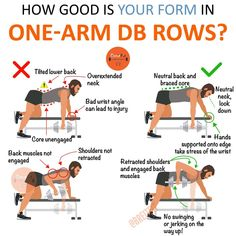 """Get Lean With This Dumbbell Circuit To Stimulate Both Muscle Growth And Fat Loss One arm dumbbell rows are a classic and belong into every training program occasionally! They seem like an easy task (""""bent over and row"""") but… Continue Reading → Traps Workout, Gym Workout Chart, Gym Workout Tips, Workouts, Dumbbell Workout, Workout Schedule, Workout Plans, Fitness Models, Tips Fitness"""