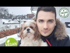 How I Turned Vegan And Why? Veganism love being vegan be vegan like stop eating meat love animal Vlog, Shih Tzu, Carne, Youtube, Instagram, Animals, Gorgeous Men, Get Lean, Vegans