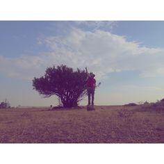 من و يك درخت