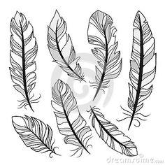 235 Mejores Imágenes De Plumas Plumas Plumas Dibujos Y