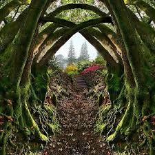 Resultado de imagem para secret gardens