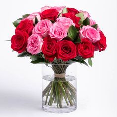 Flower delivery Sydney with freshness guaranteed by local florist. Browse Captainshop online to buy fresh flower bouquet and same day cheap flower delivery. Cheap Flower Delivery, Online Flower Delivery, Flower Delivery Service, Same Day Flower Delivery, Father's Day Flowers, Cheap Flowers, Send Flowers, Fresh Flowers, Amazing Flowers