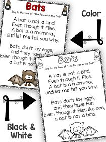 Fun in First Grade: Using Songs in Your Classroom