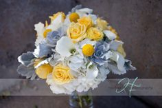hydrangeas and dahilas with billy balls and succulants | ... succulents roses craspedia billy balls hydrangea calla lily dusty