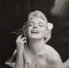 hey kind of a specific questions but do you by any chance know of some great photo's of Audrey and Marilyn taken by photographer Cecil Beaton Hi! Cecil Beaton was an amazing photographer, and all of. Joe Dimaggio, Marylin Monroe, Divas, Howard Hughes, Cecil Beaton, Catherine Deneuve, Norma Jeane, Sensual, Old Hollywood