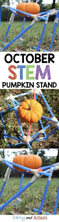 Pumpkin STEM: Make learning fun with this fall themed STEM activity in which students design and create a stand to support a pumpkin! Steam Activities, Halloween Activities, Autumn Activities, Science Activities, Halloween Games, September Activities, Halloween Science, Enrichment Activities, Science Ideas
