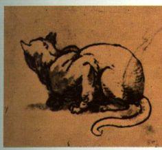 Michelangelo (Italia, 1475-1564). Interpretazione del gatto.