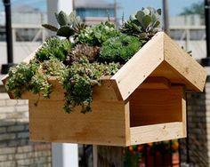Green Roof Bird Feeder | Garden Decor & Garden Crafts