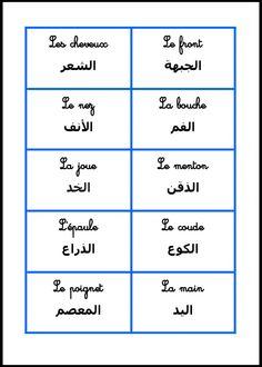 Le corps humain (arabe/français)
