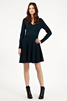Block Fit and Flare Dress