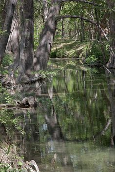 Cypress Creek, Wimberley, Texas; photo by James Woody