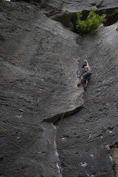 """""""Purgatory"""" (5.11), in Red River Gorge. I am no longer an 11 climber but this looks like it needs to go on my list.  Any volunteers to lead? (Source: Toni Lamiche Online Blog)"""