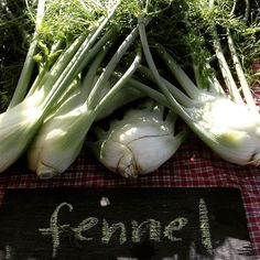 Wild Peace Farms feature their fabulous fennel at #ecoball2015 #baltimore #organic #marylandfarms #buylocal