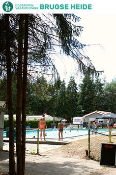 Vakantiepark Brugse Heide, gelegen in een bosrijk gebied in Noord-Brabant, heeft voor jong en oud tal van mogelijkheden voor volop vermaak te bieden. Lekker zwemmen, spelen en klauteren... Op Vakantiepark Brugse Heide kan het allemaal! #oostappen #vakantieparkinnoordbrabant #campingbrugseheide #vakantieparkbrugseheide #vakantieinnoordbrabant #vakantieineigenland #vakantie2021 #zomervakantie2021 Pagan