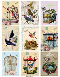 Vintage Birds Printable Tags Digital Collage Sheet - Buy 3 Get 1 Free. $3.50, via Etsy.