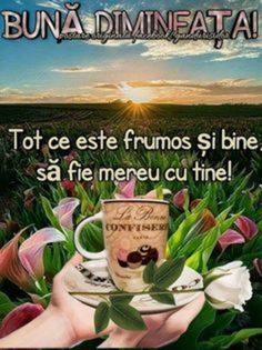 Imagini buni dimineata si o zi frumoasa pentru tine! - BunaDimineataImagini.ro Romantic Couple Hug, Romantic Couples, Coffee Flower, Motto, Quote Of The Day, Good Morning, Religion, 1, Pictures
