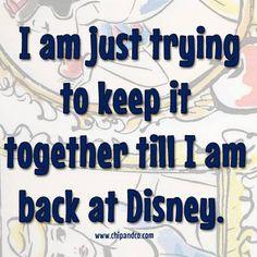 I am just trying to keep it together till I am back at Disney. Too true Disney Word, Disney Fun, Disney Girls, Disney Magic, Disney Movies, Disney Pixar, Disney Stuff, Disney Fanatic, Disney Addict