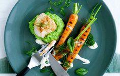 Stegt havkat med ærtepure og grillede gulerødder med citronfløde - ALT.dk