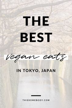 Planning a first-time trip to Tokyo? Here's a list of all my favourite vegan eateries, plus things to see and do in this bustling megacity. Healthy Travel Food, Tokyo Guide, Best Vegan Restaurants, How To Cure Anxiety, Tokyo Japan, Tokyo 2020, Vegan Quotes, Japan Travel, Traveling By Yourself
