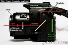 Digital SLR Beginner - Understanding Shutter Speed, Aperture and ISO    Sometimes fiddling with a camera can be a great way o learn its capabilities but theres no point in fiddling with it if you dont know what each button, setting or abbreviation means.    Learning the basics of ISO,Shutter Speed, etc is integral to you advancing as a photographer. Most photographers try to attain a style, if you know the basics you can build on them and create your own, thus standing apart from the crowd.