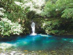 ながさき県民の森 オシドリ淵の滝