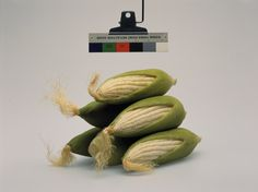 """クリストファー·ウィリアムズ(1956年生まれ、アメリカ人)。 コダック三点リフレクションガイド/©1968、イーストマン·コダック社、1968 /(とうもろこし)ダグラス·M·パーカースタジオ、グレンデール、カリフォルニア州/ 4月17日、2003年、2003年移染プリント/写真。 紙:16×20 """"(40.6 X 50.8センチメートル); 額装:29 1/8×32 1/8(74 X 81.6センチメートル)。 トーマス·シュトゥルート、ベルリン©クリストファー·ウィリアムズのコレクション"""