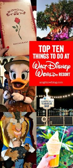 A fun list of Top 10 Things to Do at Walt Disney World!