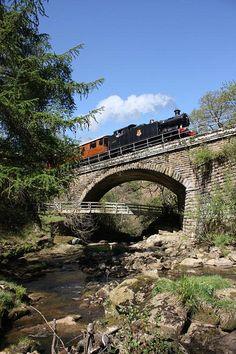 Travel by steam train via the North Yorkshire Moors Railway.