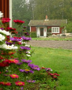 Quiet Swedish morning. Barn, Plants, Home Decor, Converted Barn, Decoration Home, Room Decor, Plant, Home Interior Design, Barns